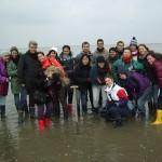 Im Wattenmeer bei Cuxhaven